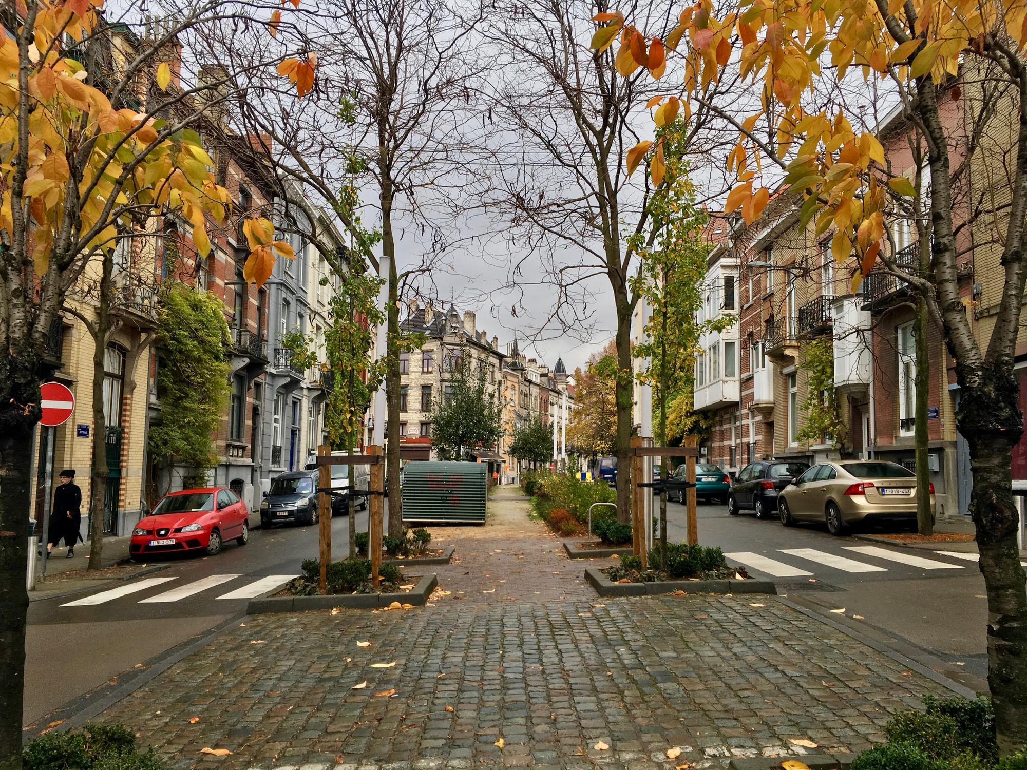 🇧🇪 Брюссель, Бельгия, ноябрь 2016.