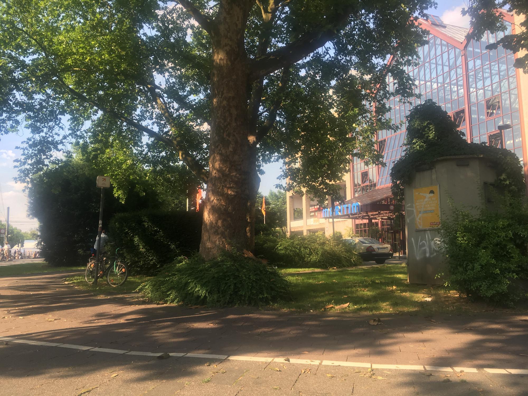 🇩🇪 Кёльн, Германия, июль 2017.