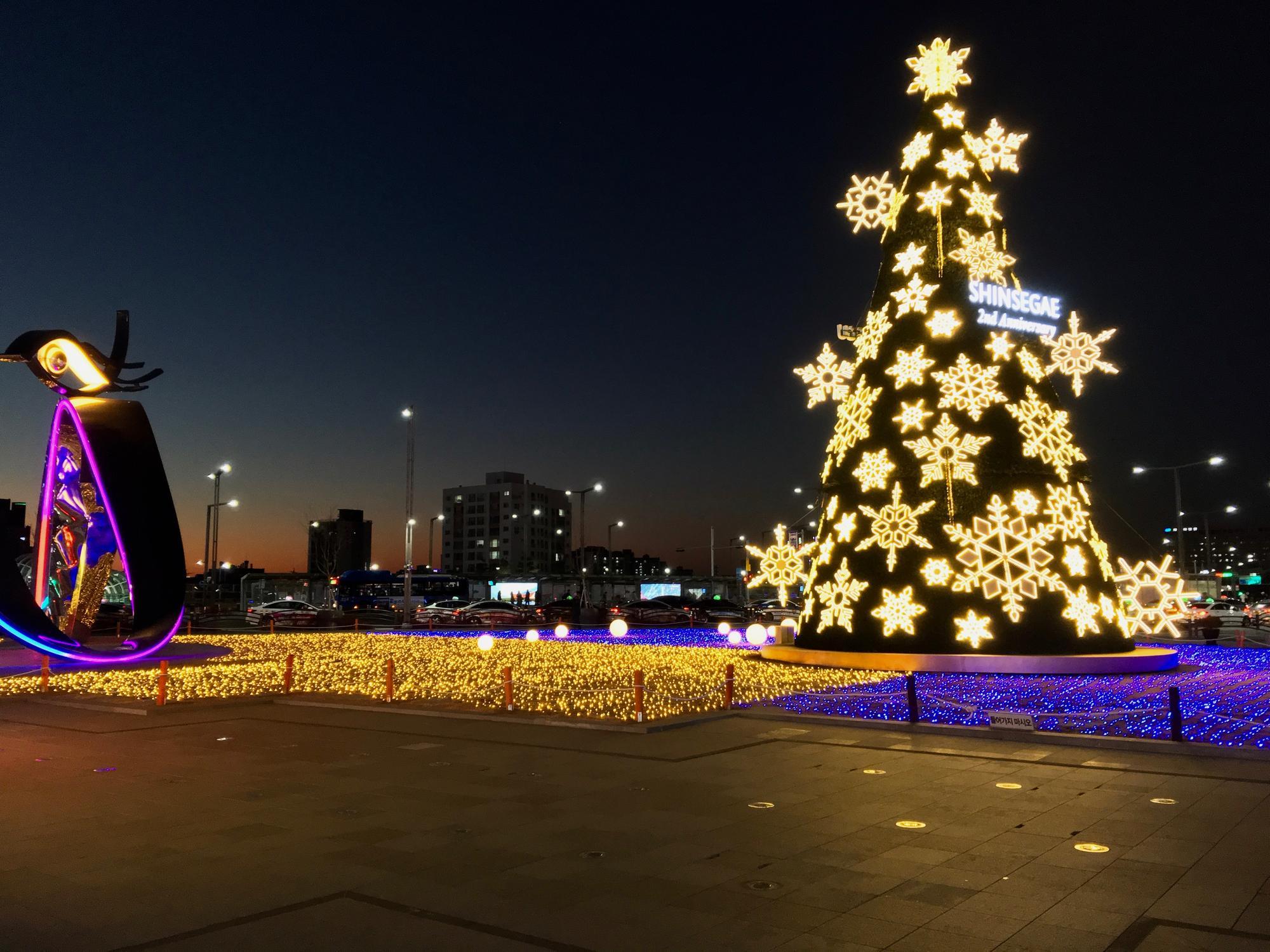🇰🇷 Daegu, South Korea, january 2019.