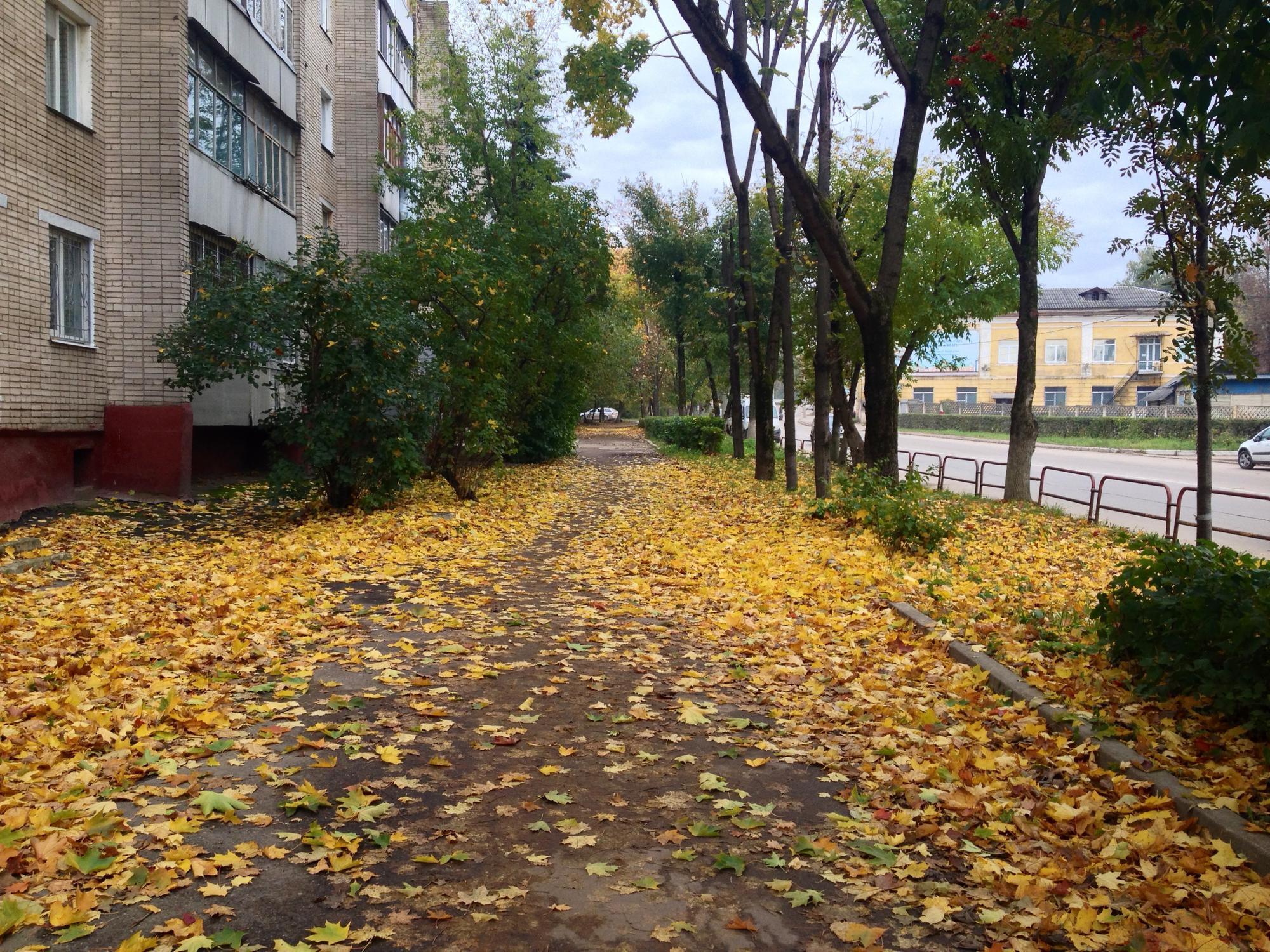 🇷🇺 Kaluga, Russia, september 2013.