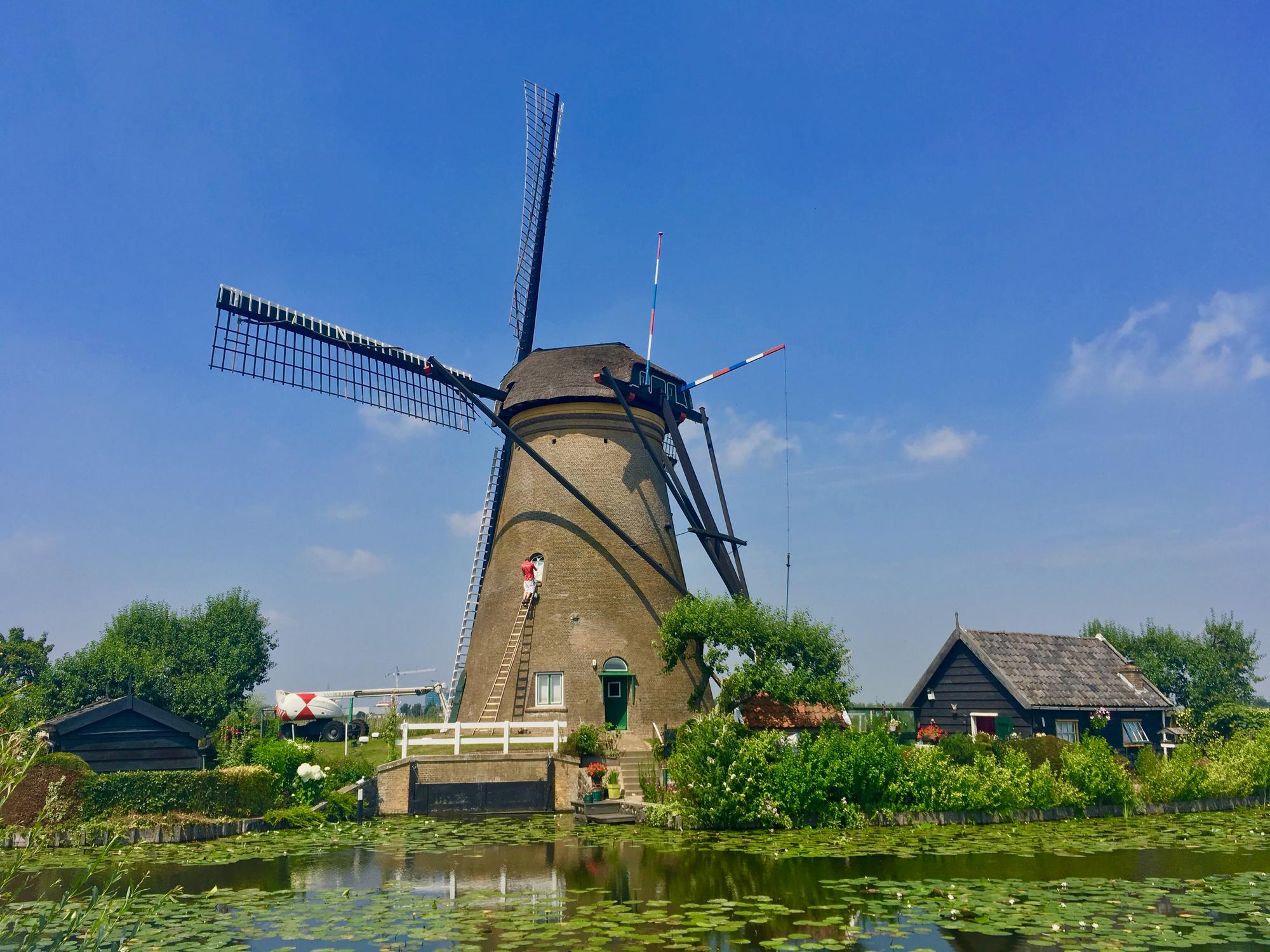 🇳🇱 Kinderdijk, Netherlands, july 2017.