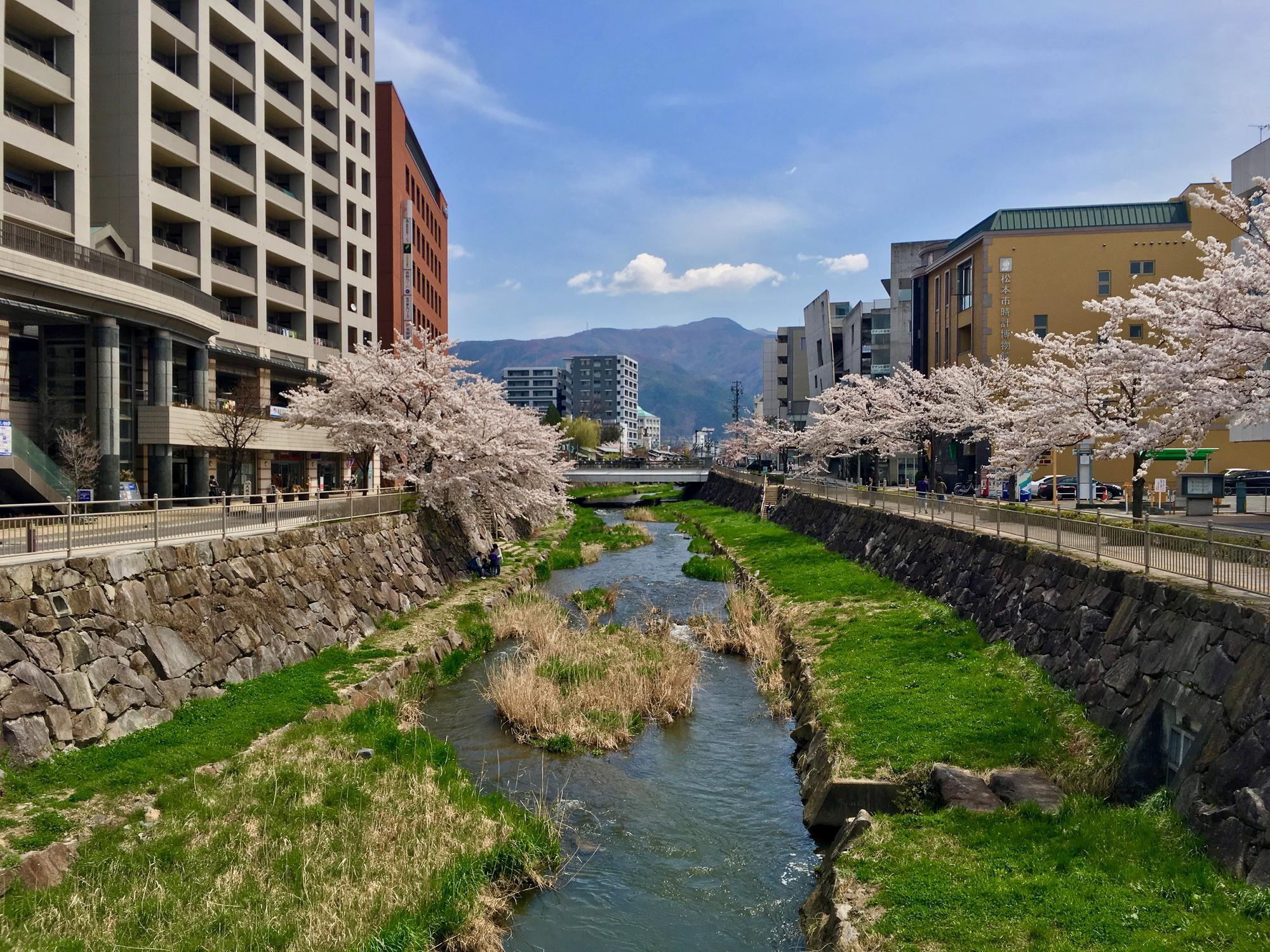 🇯🇵 Matsumoto, Japan, april 2017.