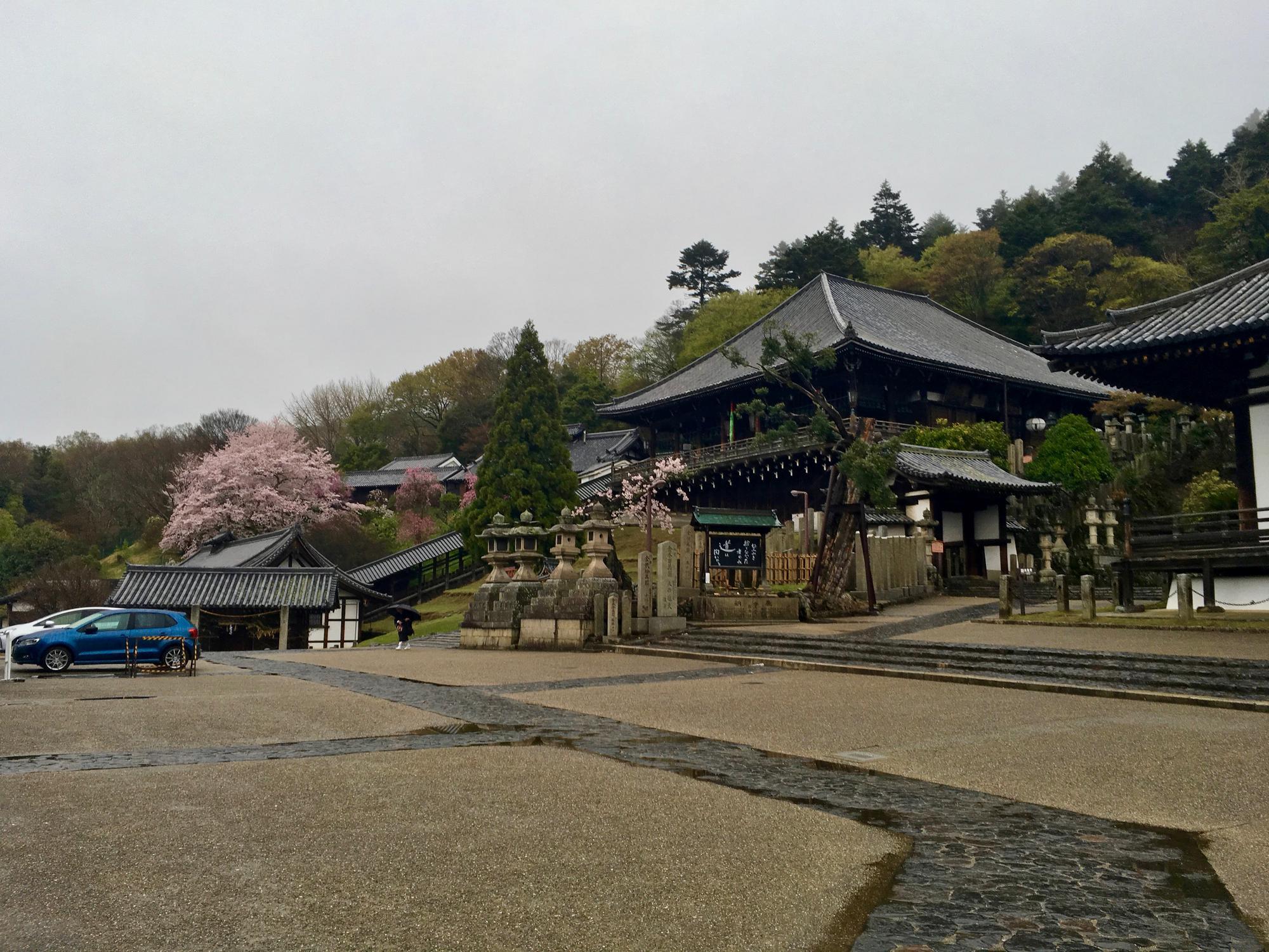 🇯🇵 Нара, Япония, апрель 2017.