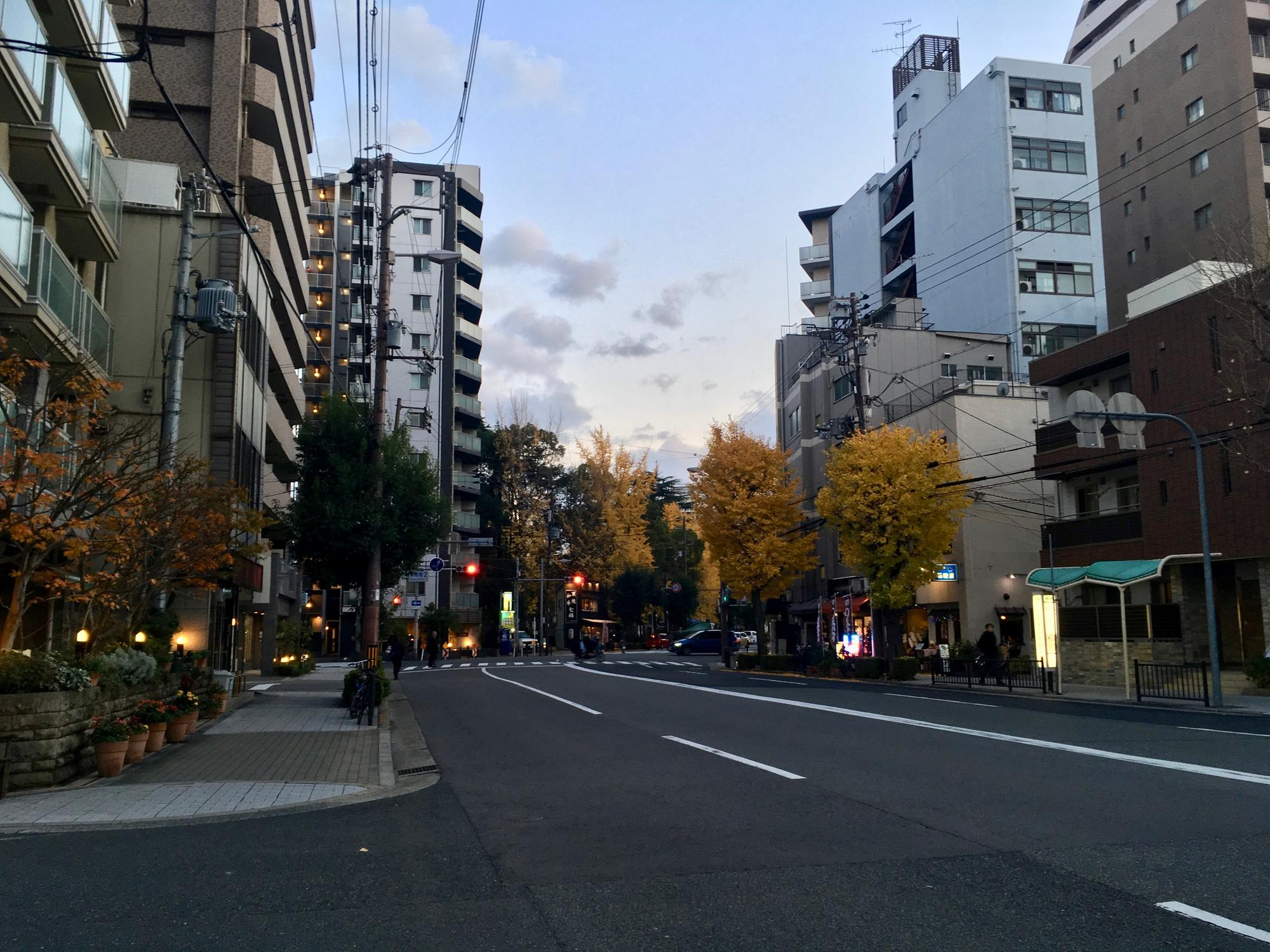 🇯🇵 Осака, Япония, декабрь 2017.