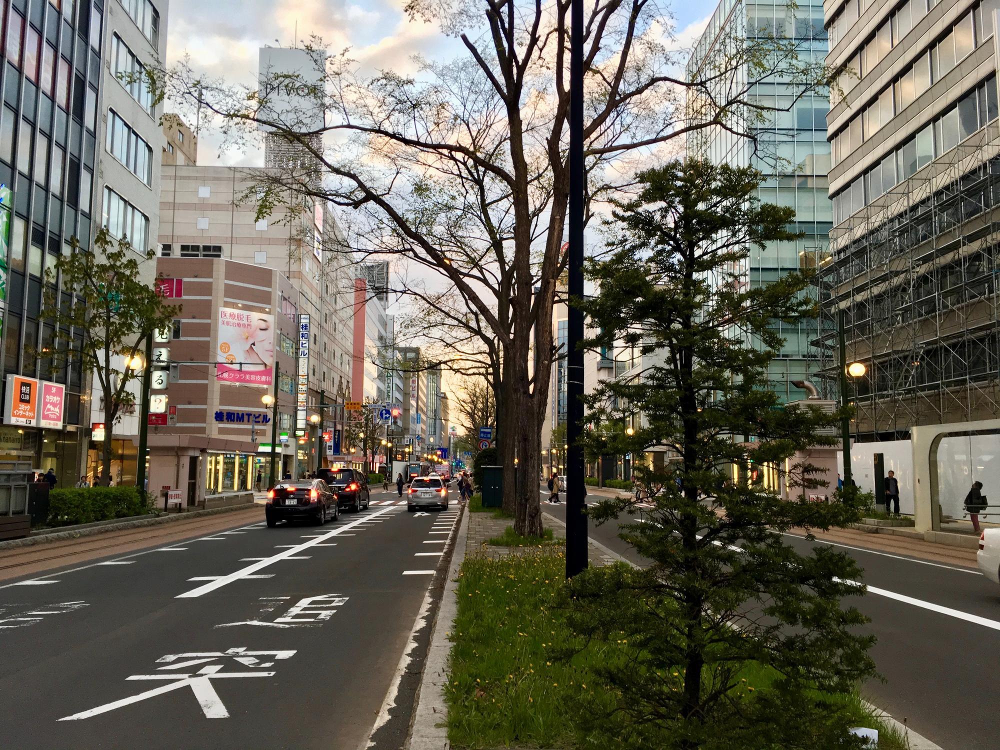 🇯🇵 Саппоро, Япония, май 2018.