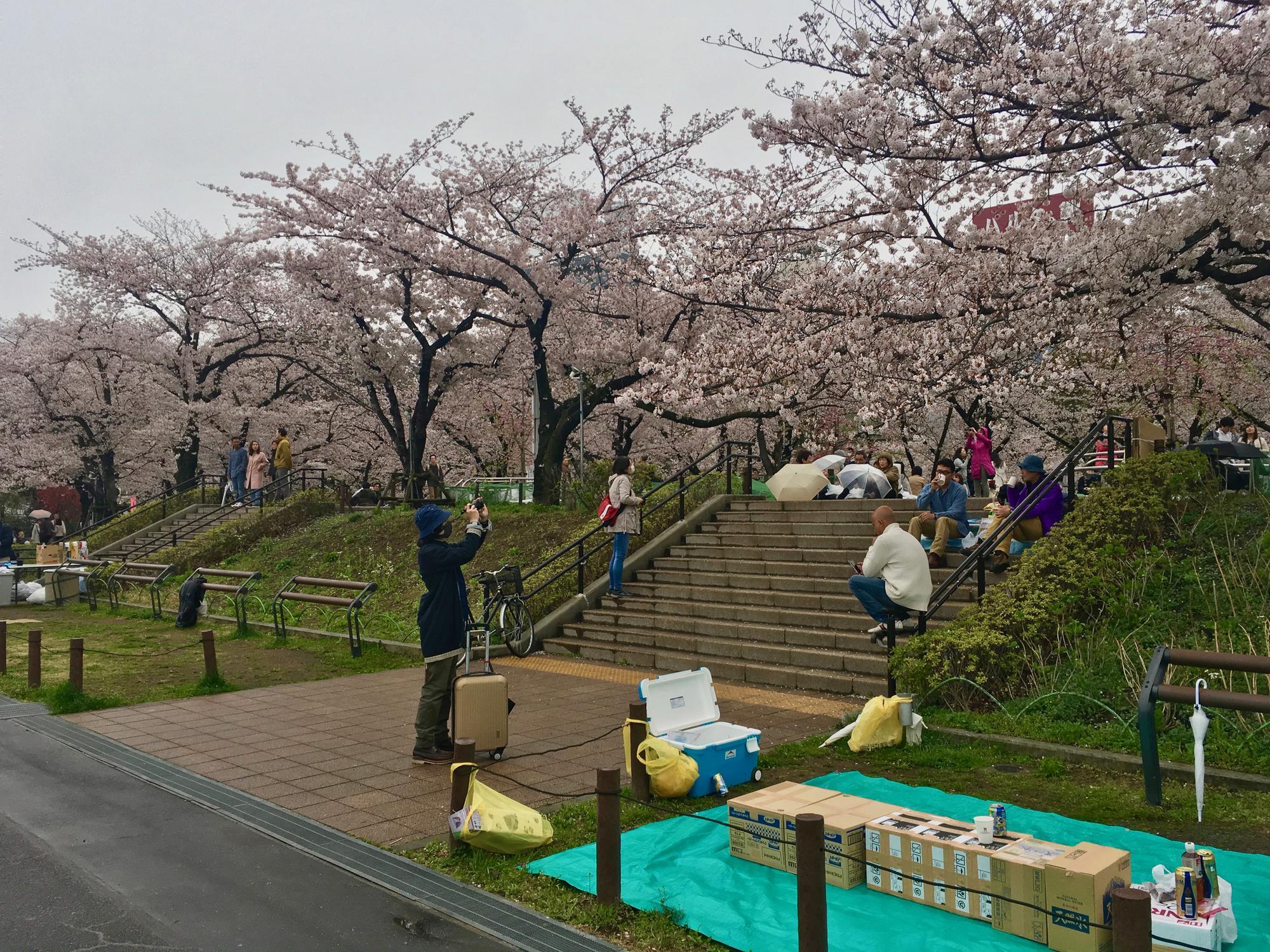🇯🇵 Tokyo, Japan, april 2017.